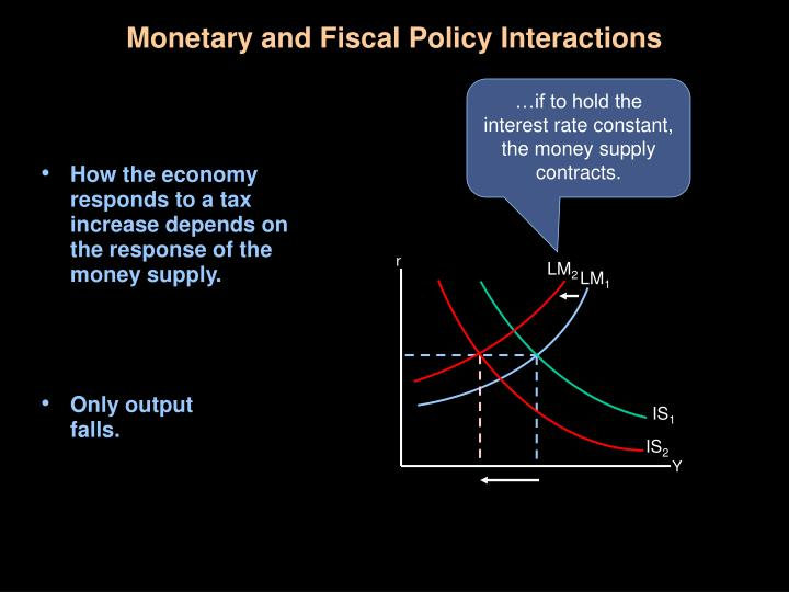 Monetary and Fiscal Policy Interactions
