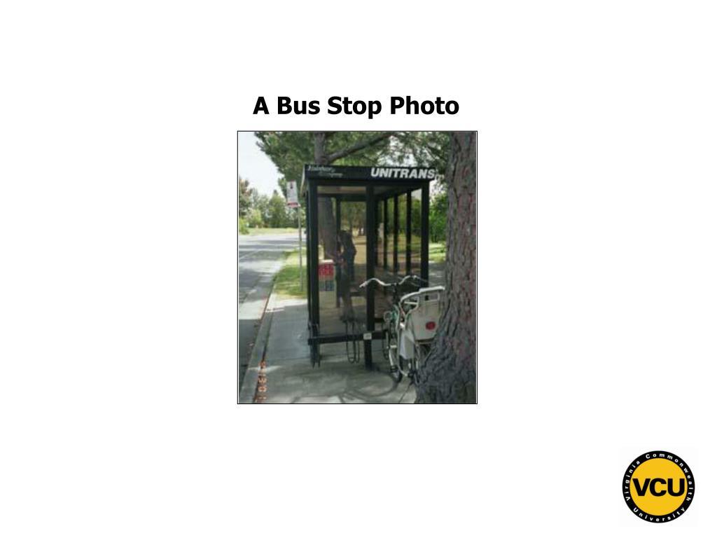 A Bus Stop Photo