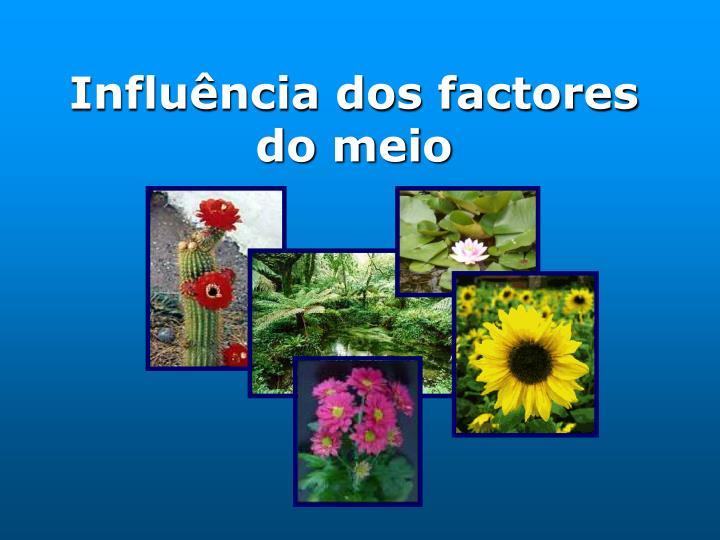 Influência dos factores do meio