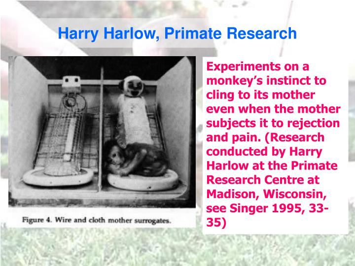 Harry Harlow, Primate Research