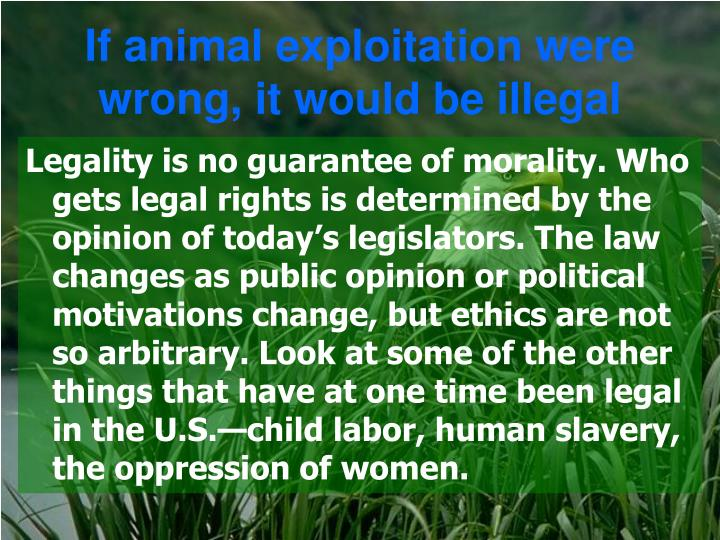 If animal exploitation were wrong, it would be illegal