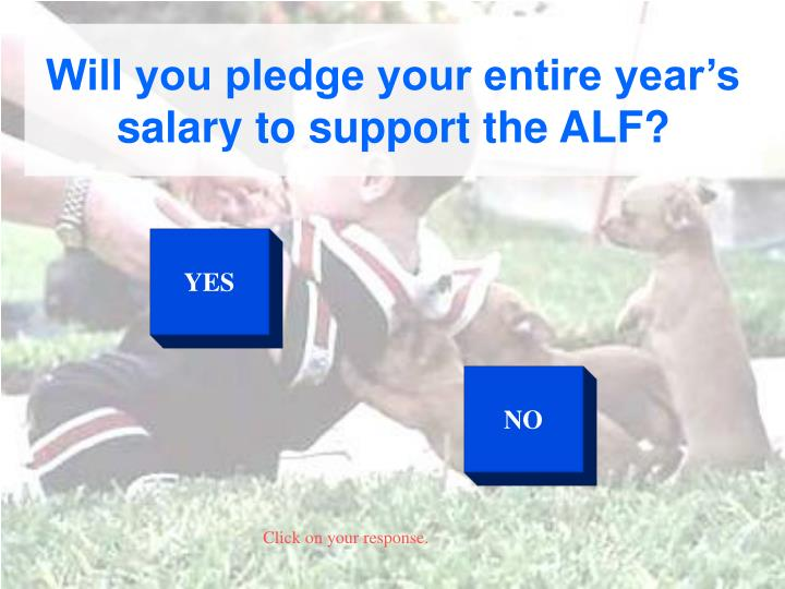 Will you pledge your entire year's salary to support the ALF?