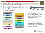 cultural advisory groups