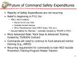 future of command safety expenditures