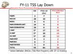 fy 11 tss lay down