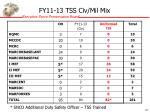 fy11 13 tss civ mil mix