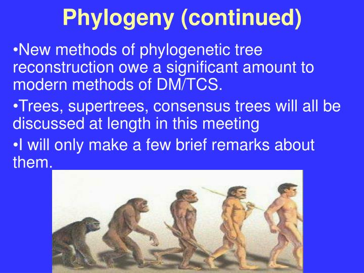 Phylogeny (continued)