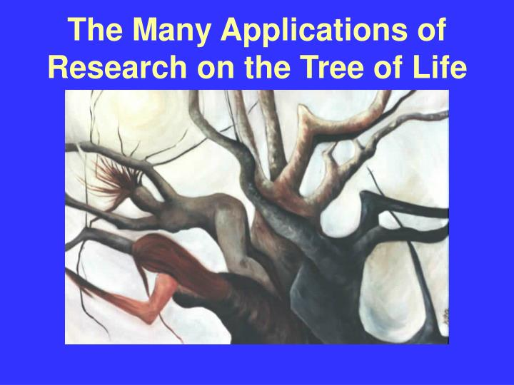 The Many Applications of Research on the Tree of Life