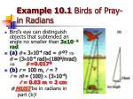 example 10 1 birds of pray in radians