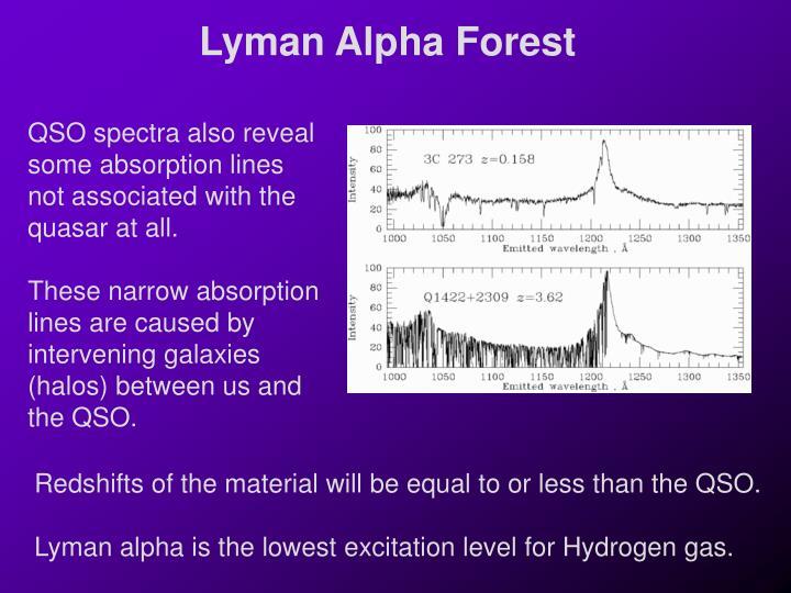 Lyman Alpha Forest