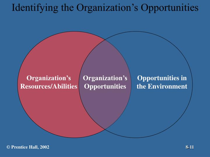 Identifying the Organization's Opportunities