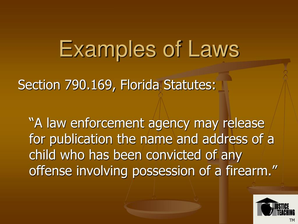 Examples of Laws