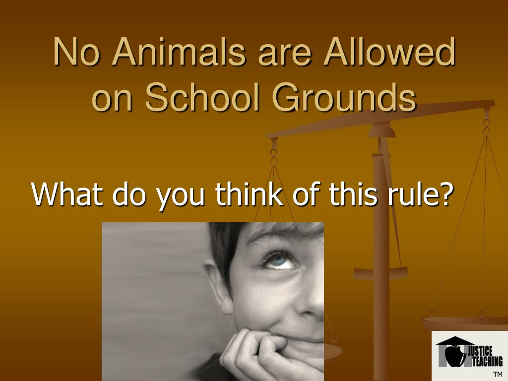 No Animals are Allowed on School Grounds