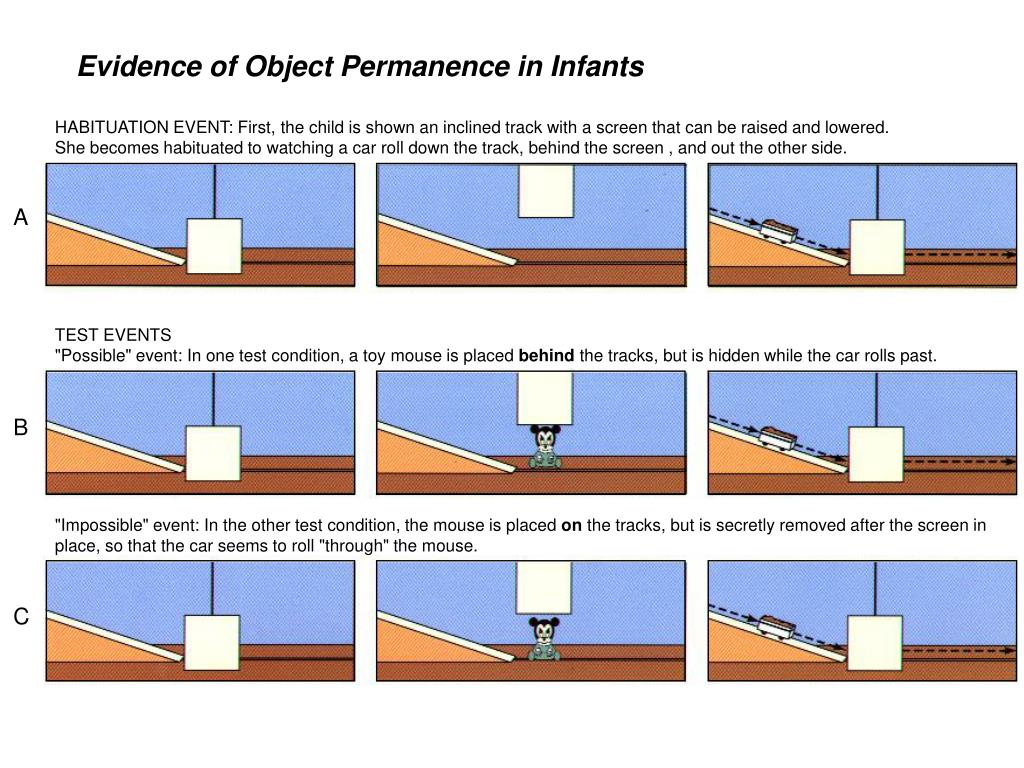 Evidence of Object Permanence in Infants