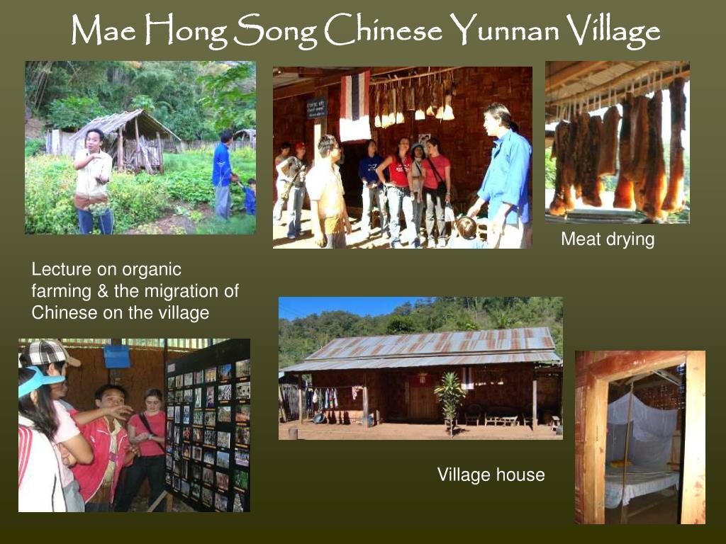 Mae Hong Song Chinese Yunnan Village
