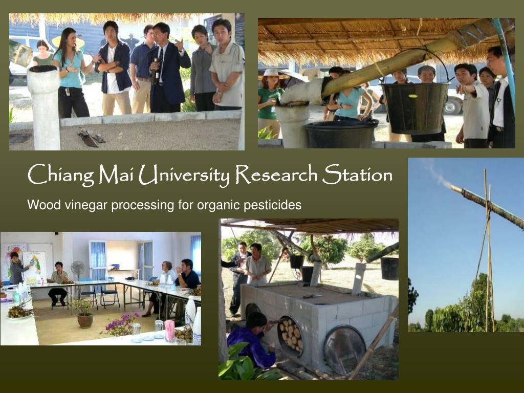 Chiang Mai University Research Station