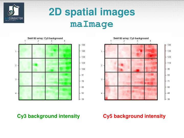 2D spatial images