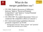 what do the merger guidelines say