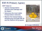 esf 1 primary agency