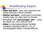 breastfeeding support44