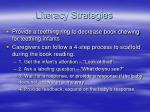 literacy strategies22