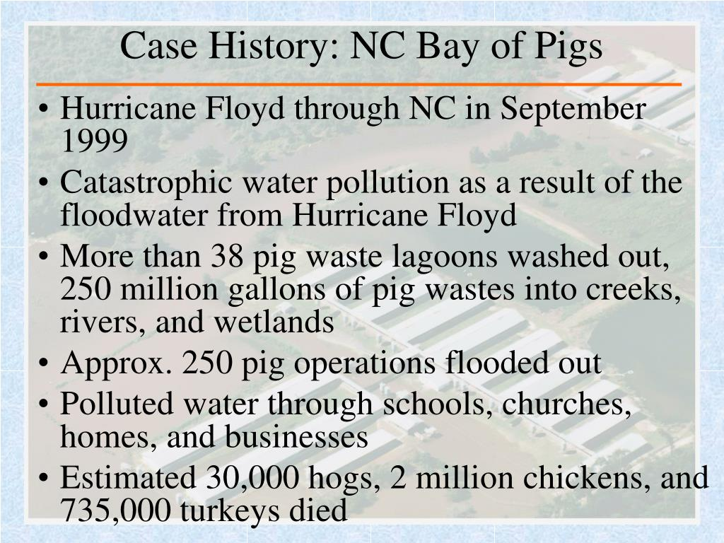 Case History: NC Bay of Pigs
