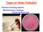 types of water pollution7
