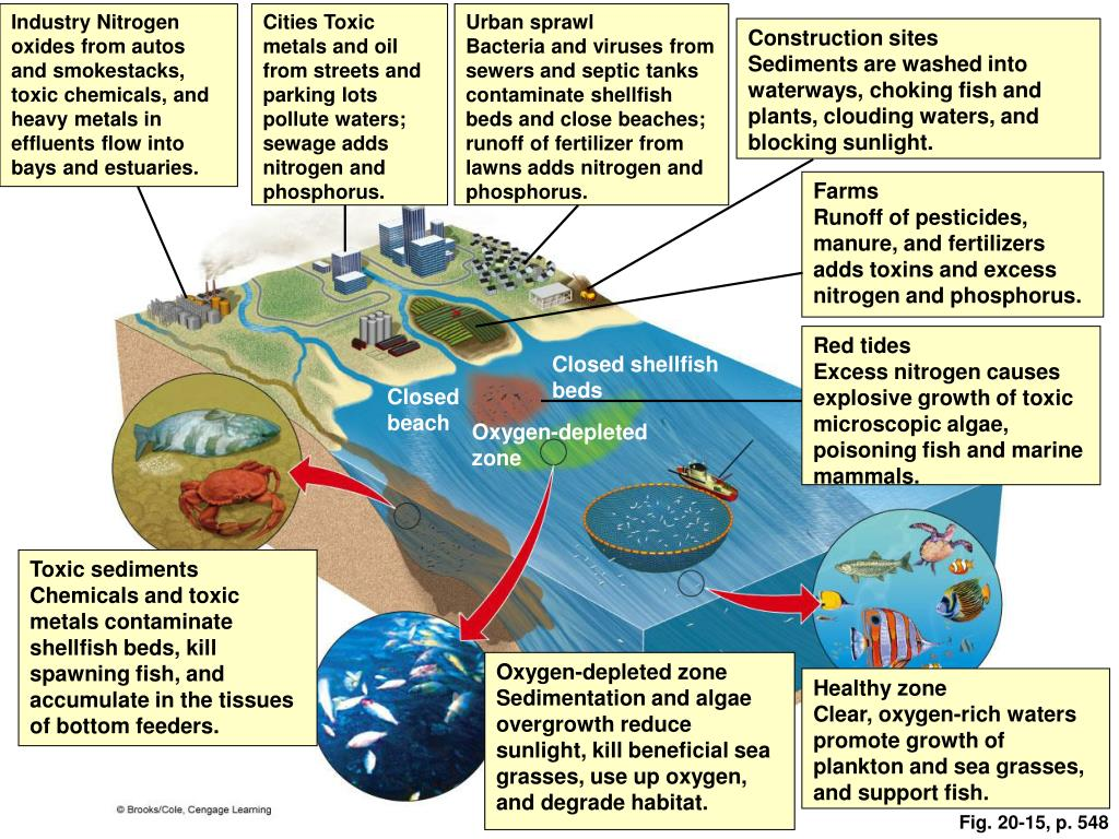Industry Nitrogen oxides from autos and smokestacks, toxic chemicals, and heavy metals in effluents flow into bays and estuaries.