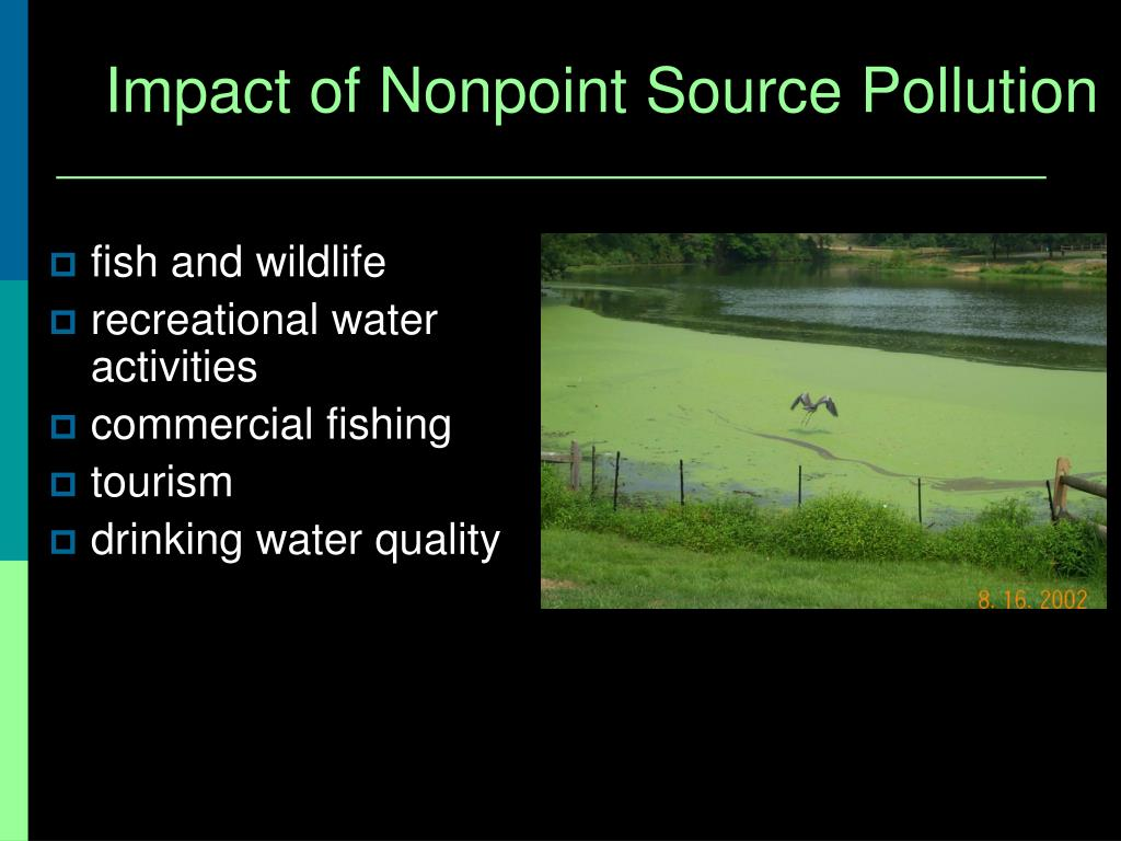 Impact of Nonpoint Source Pollution