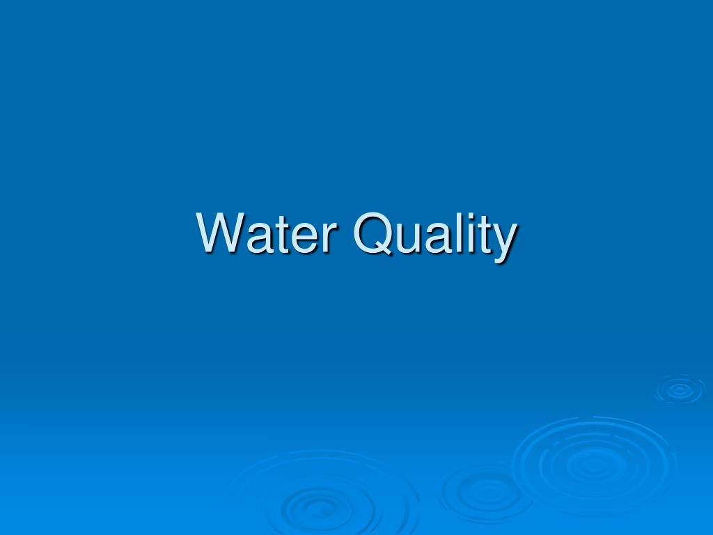 water quality l.