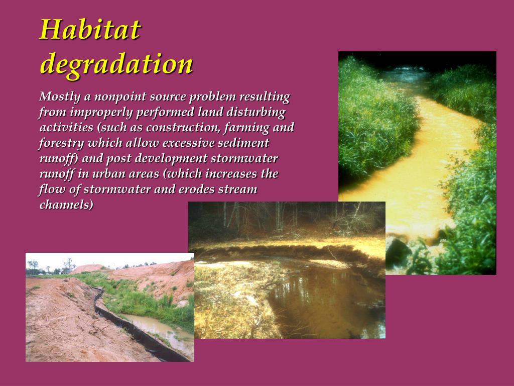 Habitat degradation