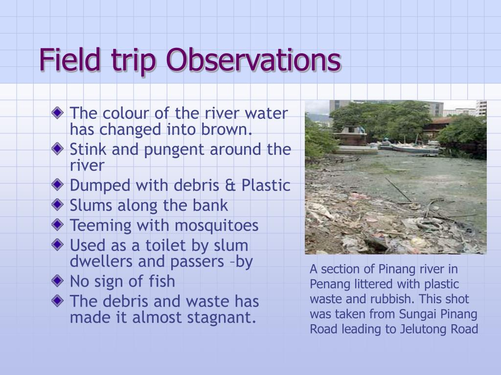 Field trip Observations