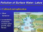 pollution of surface water lakes