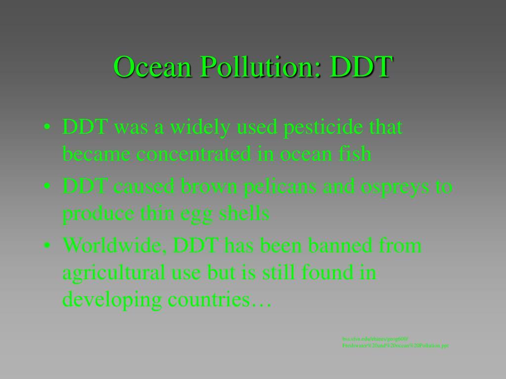 Ocean Pollution: DDT