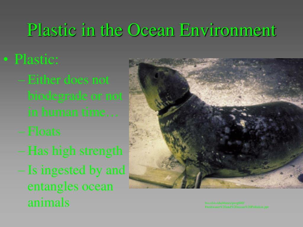 Plastic in the Ocean Environment