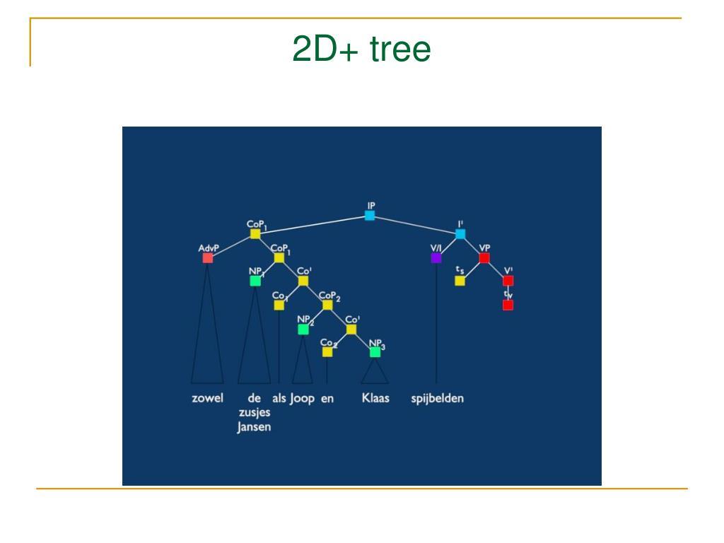 2D+ tree