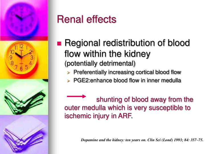 Renal effects