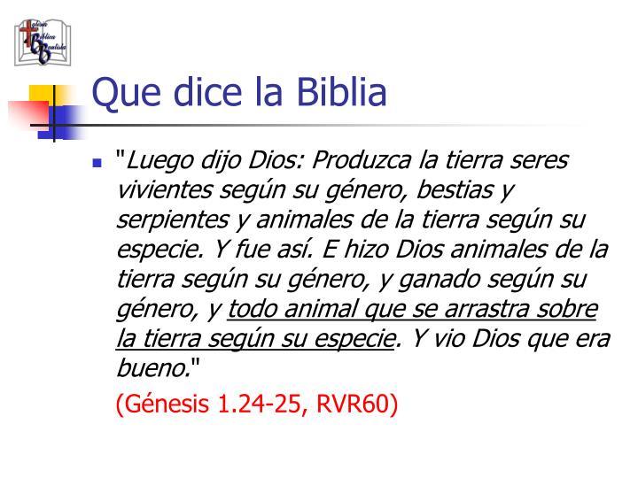 Que dice la Biblia