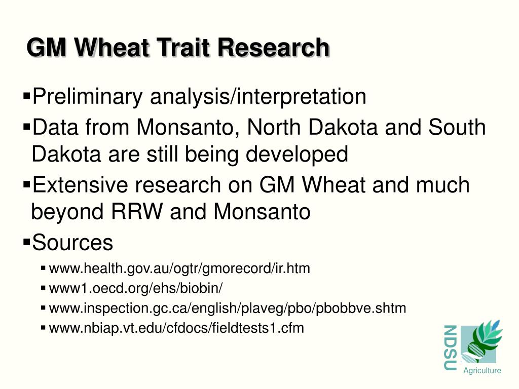 GM Wheat Trait Research