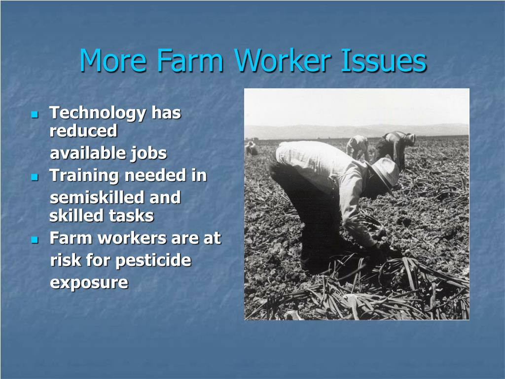 More Farm Worker Issues