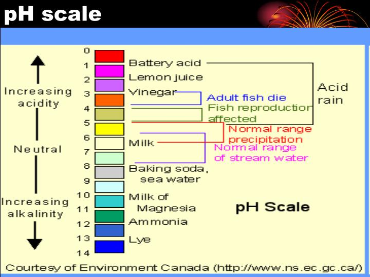how the ph scale affects the The ph scale is something we diets such as the alkaline diet claim that it is possible to affect the ph value of your body by altering your diet to include.