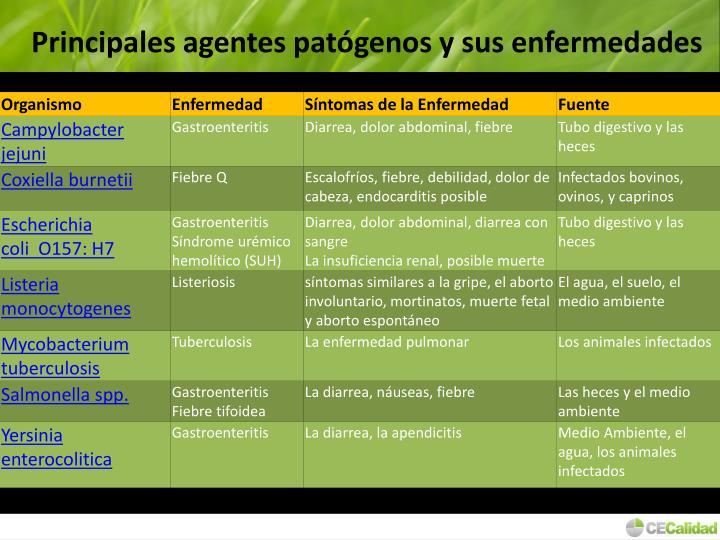 Principales agentes patógenos y sus enfermedades