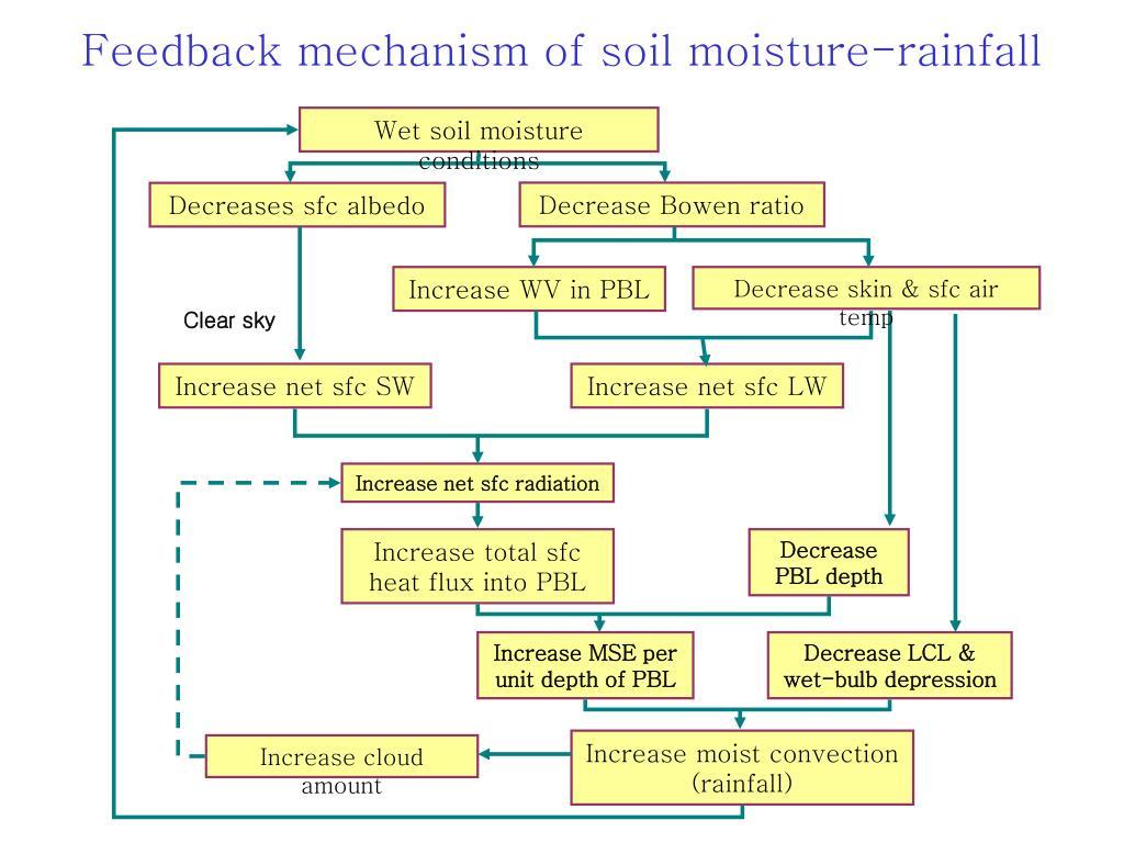 Wet soil moisture conditions