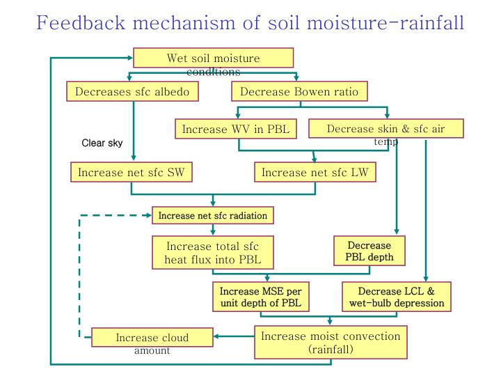 Feedback mechanism of soil moisture rainfall