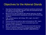 objectives for the adrenal glands