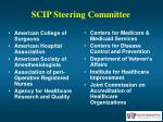 scip steering committee