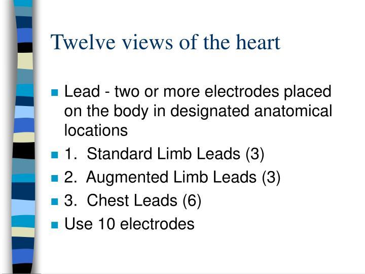 Twelve views of the heart