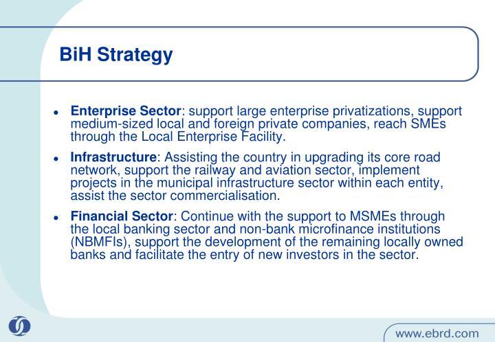 BiH Strategy