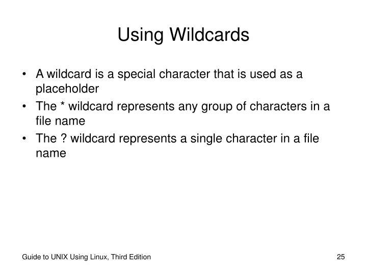 Using Wildcards