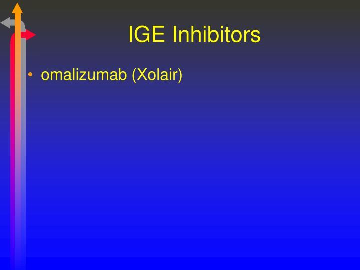IGE Inhibitors
